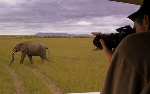 10 Day Highlights of East Africa Tour