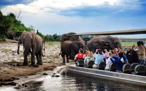 Chobe River Cruise on a 21 Day Namibia and Botswana Overland Comfort Tour