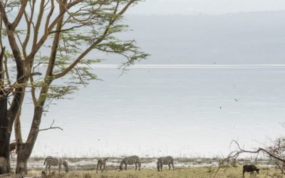 East Africa Lakes