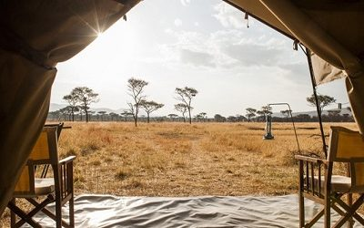 Tented Safaris – What is it, When and Where Should I Go?